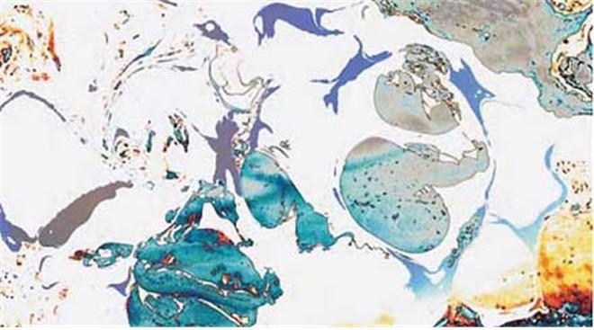 第三世多杰羌佛工巧明展显之 西画 第8张